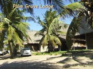Palm Grove Mozambique